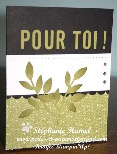 Ensemble noir-olive 1 par Stéphanie Hamel